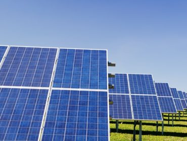how do solar panels work? Panels in field